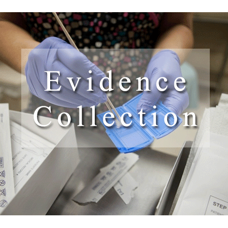 Collection Physical Evidence
