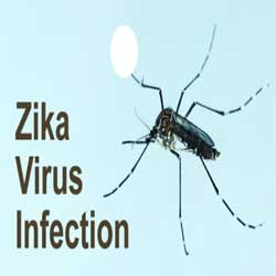 The complications Zika Virus disease